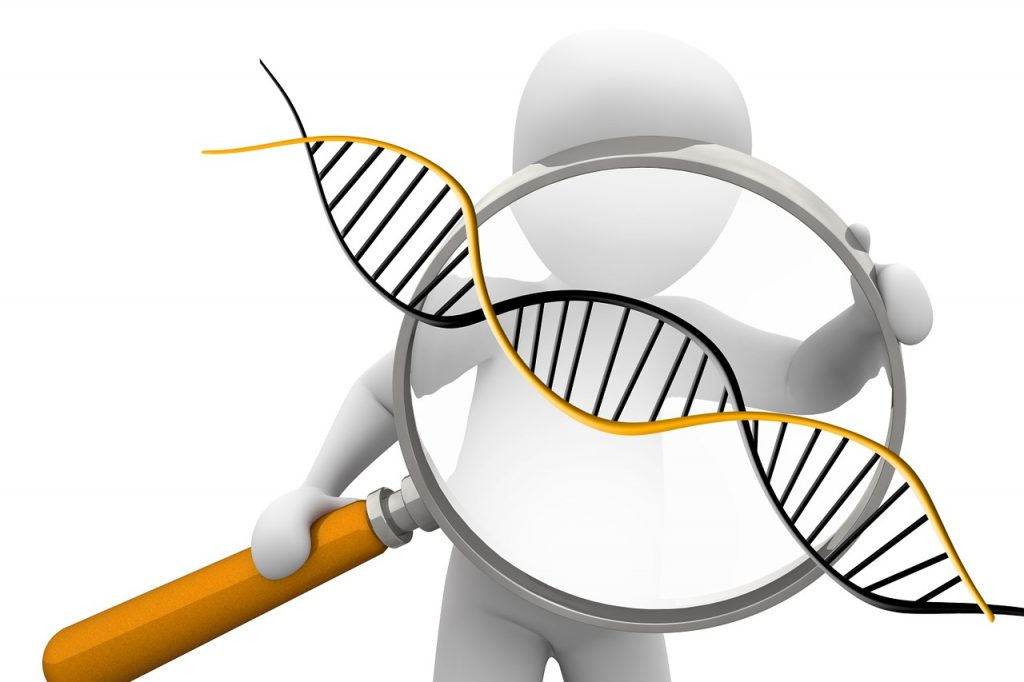 deoxyribonucleic-acid-1500068_1280